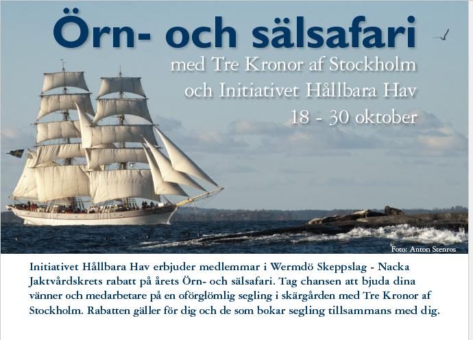 Örn och säsafari - Briggen Tre Kronor
